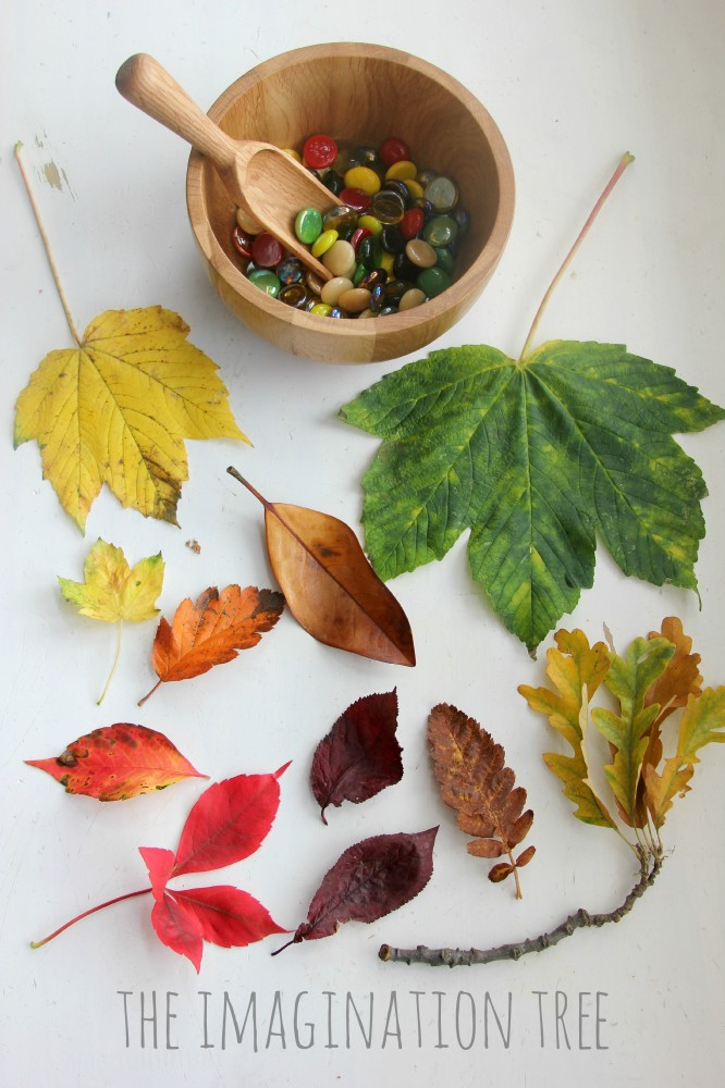 Invitation-to-sort-and-match-gems-to-Autumn-leaves-666x1000