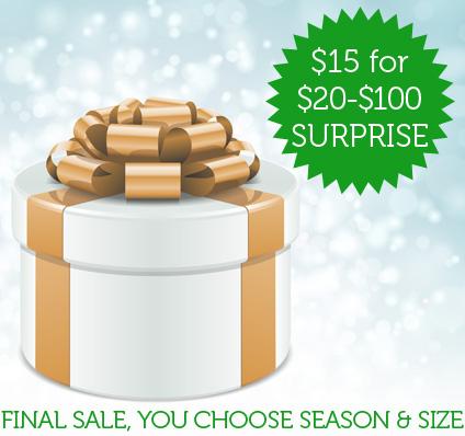 $15 Suprise Item